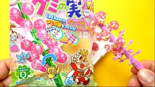 Kracie - Gummy Candy Tree Making Kit