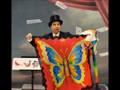 David Sage The Wizard of Wonder Elementary School Stage Magic Show clips