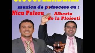 NICU PALERU SI ALBERTO - CIOCOFLENDERII, COLAJ PETRECERE (VIDEO HD SPIROS GALATI)