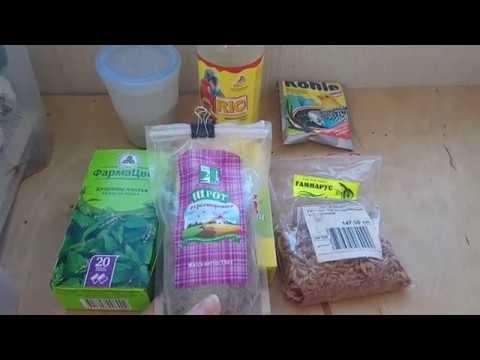 Лакомства и дополнительные корма для попугаев и амадин
