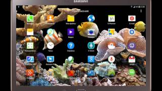 Видео обои для планшета морской аквариум