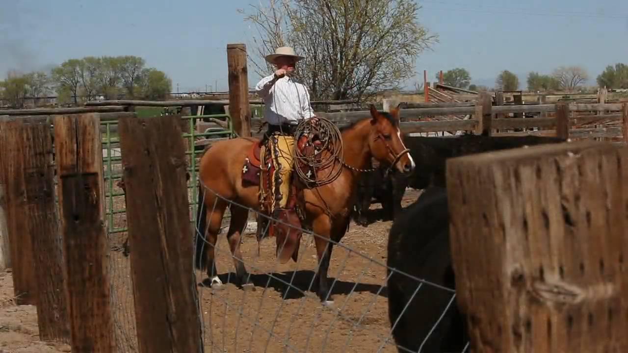 Vaquero Californio Buckaroo Ranch Roping Hackamore