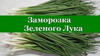 ЗАМОРОЗКА ЗЕЛЕНОГО ЛУКА НА ЗИМУ СУПЕР СПОСОБ для пирогов и салатов!!!