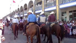 Savora Arabian at Mexico Parade