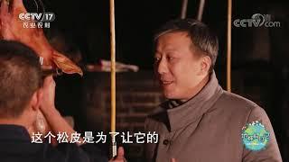 《地球村日记》 20200617 地球村美食Vlog:老手艺烤出的猪肉味道有多美?|CCTV农业