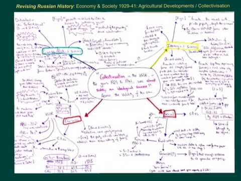 Was Collectivisation in the USSR in the years 1929-1941 almost solely an ideological success?