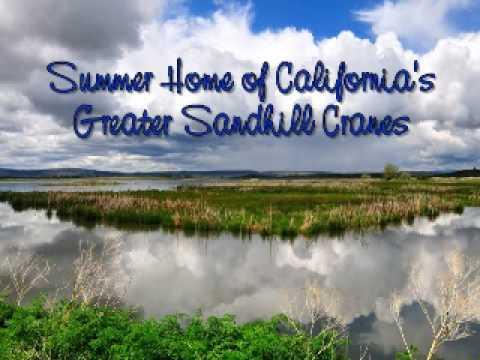 Postcard From Modoc National Wildlife Refuge