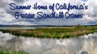 Postcard From Modoc National Wildlife Refuge