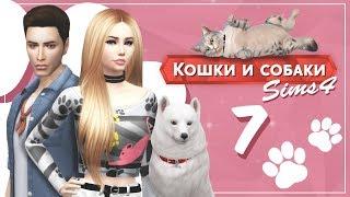 """The Sims 4 Кошки и собаки: #7 """"Кого-то стерилизовали?!"""""""