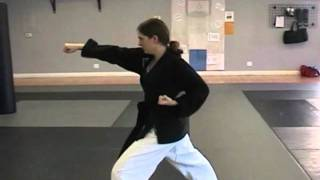 Tae Kwon Do Do-San Tutorial (Full length)