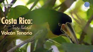 Tesoro Natural: Parque Nacional Volcán Tenorio