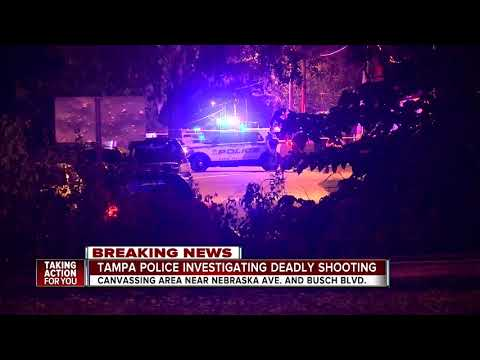 Tampa police investigating homicide after man found shot multiple times in roadway
