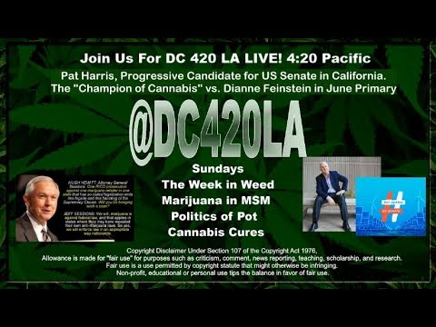 A Cannabis Conversation @PatHarrisCA on DC 420: Week in Weed w/ Progressive US Senate Candidate