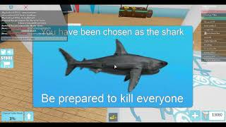 getting new froggy boat and ducky raptor! Roblox Sharkbite