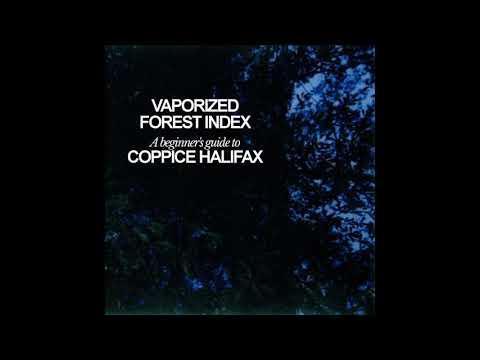 Coppice Halifax - Sun Version