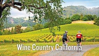 Wine Country Bike tour