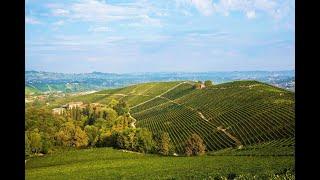 In viaggio con WineNews nella storica tenuta di Fo...