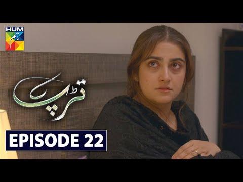 Download Tarap Episode 22 HUM TV Drama 26 July 2020