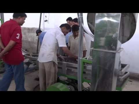 Automatic cashew processing factory