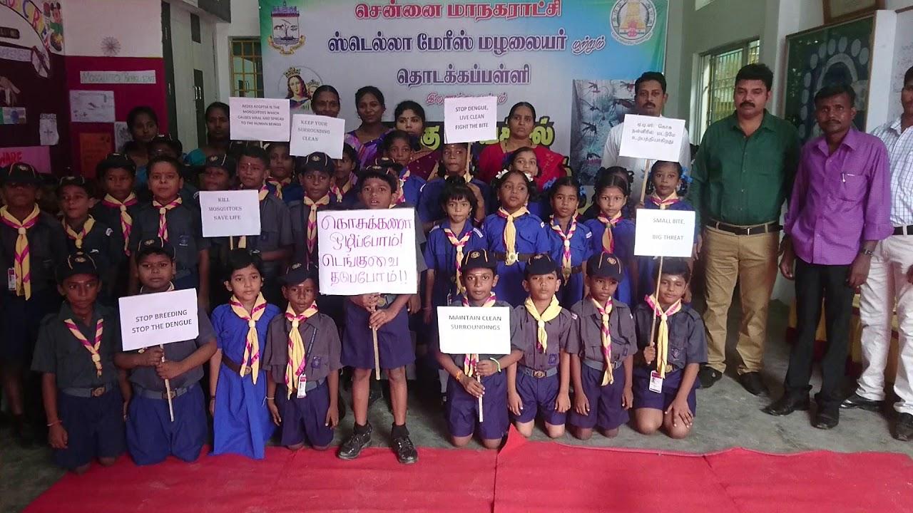 Dengue Awareness Tamil Slogan Stella Mary's School Chennai 600081