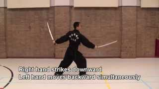 Ssanggeom #1 쌍검 머리치기 Twin Swords Head Strike