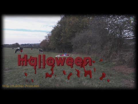 🌠Saison1 Ep 4 #Hallowen 𝐋𝐎𝐍𝐆 🅽🅾 🅲🅴🅽🆂🆄🆁🅴 🎀 Lâcher-Prise 👫 ➰ #Shibuntu 🌸 #Shibari ⛩ #Kinbaku 🌈