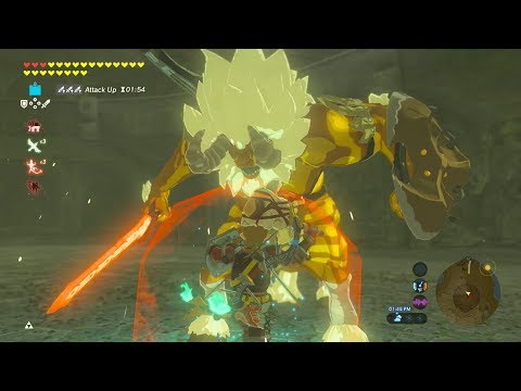 GOLD LYNEL FIGHT NO DAMAGE - Zelda Breath Of The Wild