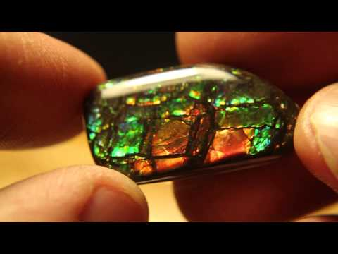 25.9ct Beautiful Canadian Korite Mine Ammolite