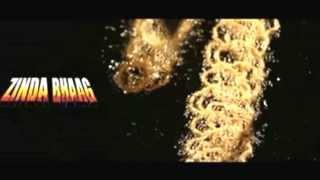 Zinda bhaag ja song by uth rockxxx. Zinda bhaag movie