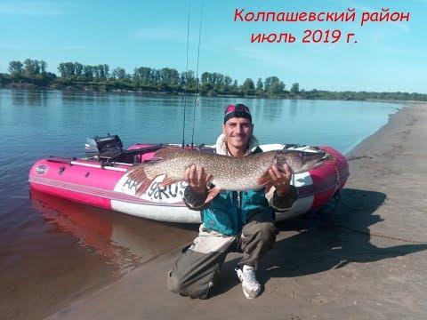 Рыбалка в Томской области. Колпашево  2019