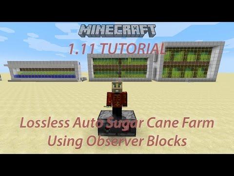 1.11 Sugar Cane Farm Using Observer Blocks (See link for new design)