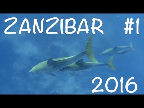Dovolená na Zanzibaru 1 - Dhown Inn, Farma s kořením, Želví ostrov, Stone Town, Delfíni v Kizimkazi