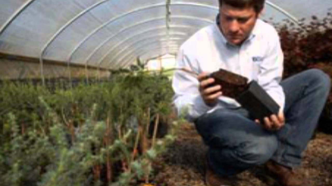 Careers In Agriculture - YouTube