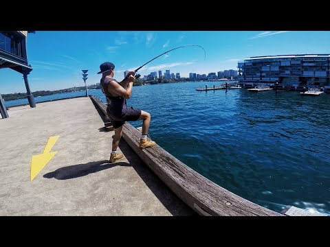 THE HARDEST PLACE TO CATCH FISH? - LANDBASED FISHING AUSTRALIA