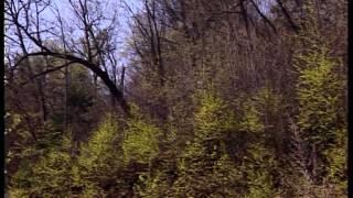 """Д/ф о съёмках фильма «Дерсу Узала» , Россия. """"Зона жизни"""" 2000 г. ОТВ-ПРИМ"""