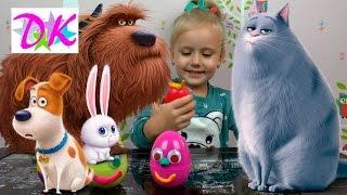 ТАЙНАЯ ЖИЗНЬ ДОМАШНИХ ЖИВОТНЫХ смотреть онлайн | Обзор новых игрушек МАКС мультик собака. Мультфильм
