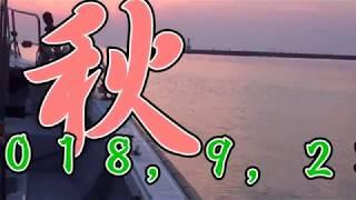 鯛ラバの五目釣り thumbnail