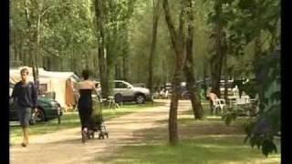 Le camping Les Saules**** à Cheverny