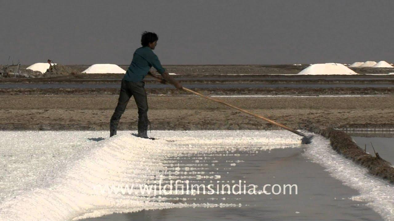Water turns into salt Its Magic Gujarat