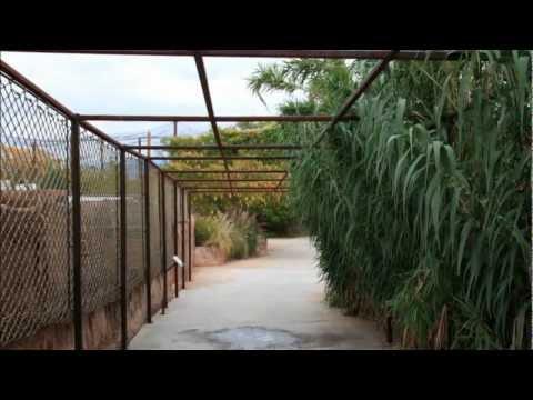 Picture Show Rio Grande Zoo, Albuquerque New Mexico