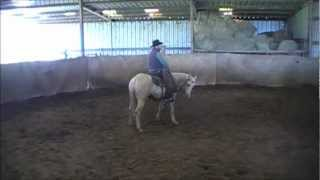 Colt Starting for Road to the Horse, Gray Ranch Stallion  by Dauphin Horsemanship