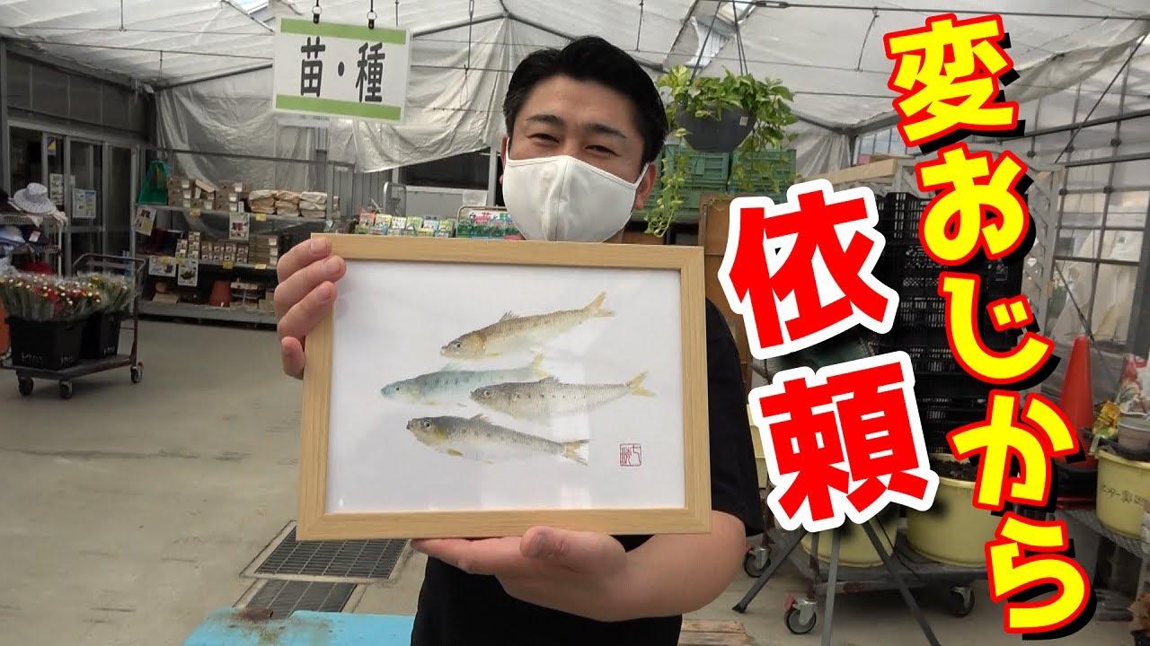 へんな魚おじさんからの依頼です!えっ‼マイワシを魚拓にするんですか!?【アクリル絵の具】【カラー魚拓】