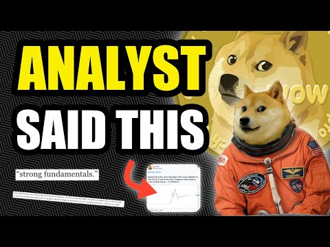 THESE ANALYST SAID THIS ABOUT DOGECOIN...
