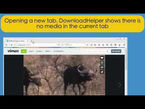 Video DownloadHelper 6: User interface basics