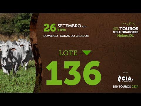 LOTE 136 - LEILÃO VIRTUAL DE TOUROS 2021 NELORE OL - CEIP