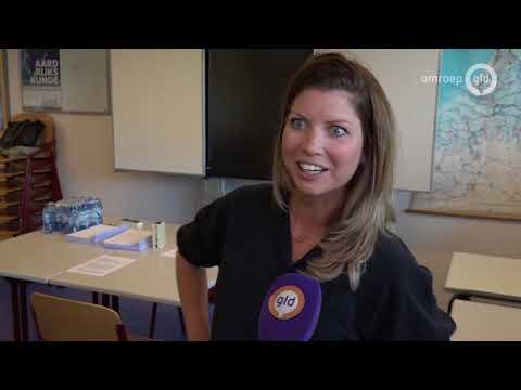 Hoogleraren maken examen Nederlands: 'Zweet op m'n voorhoofd'