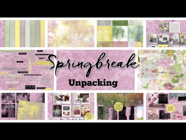 Springbreak - Unpacking by NBK-Design