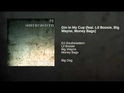 Gin in My Cup (feat. Lil Boosie, Big Wayne, Money Bags)