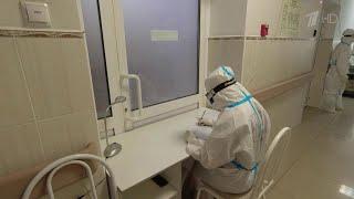 В России зафиксированы новые максимумы по числу заболевших и умерших от коронавируса