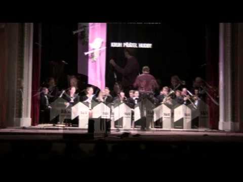 B&W Orchestra ZUŠ Bučovice, 7.3.2013